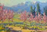 Benjamin Brown Blossom Time